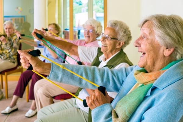 elder-exercise